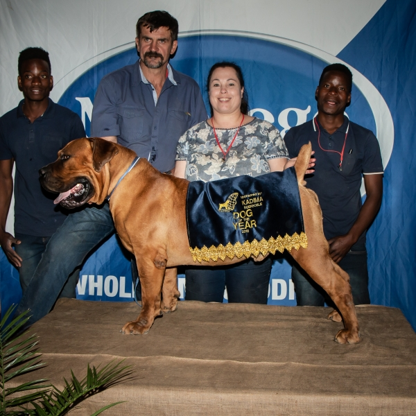MES Arnold I, 2018 Dog of the Year